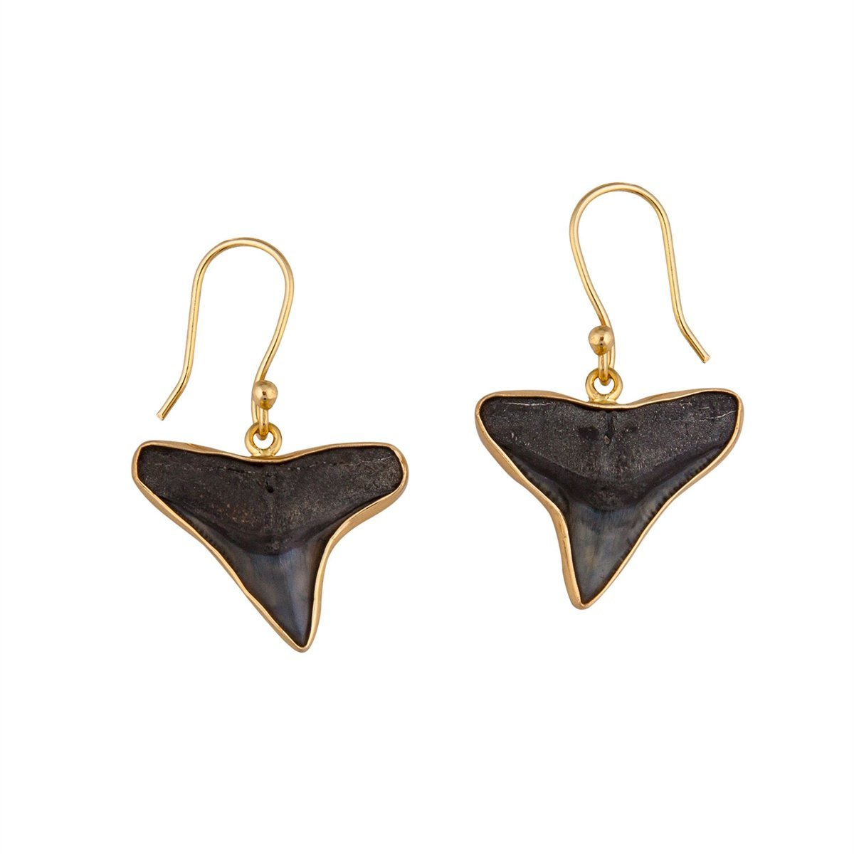 alchemia-fossil-shark-teeth-earrings - 1 - Charles Albert Inc