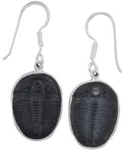 Sterling Silver Trilobite Drop Earrings