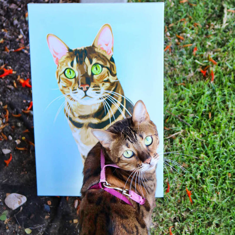 Barkly | Custom pet canvas with your cat face