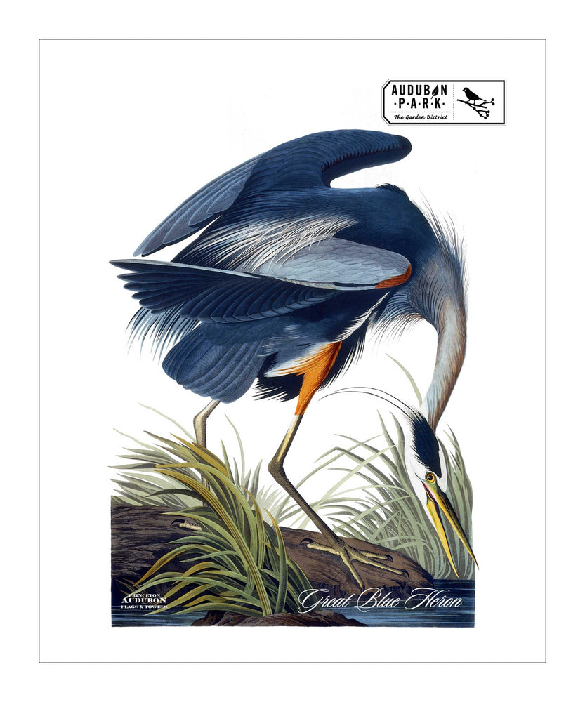 APGD, Pocket/Kitchen/Tea Towel, Great Blue Heron, GREATBLUEHERON, S