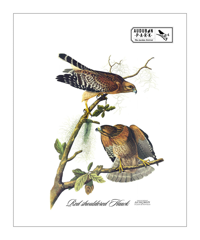 APGD, Pocket/Kitchen/Tea Towel, RS, REDSHOULDEREDHAWK, S