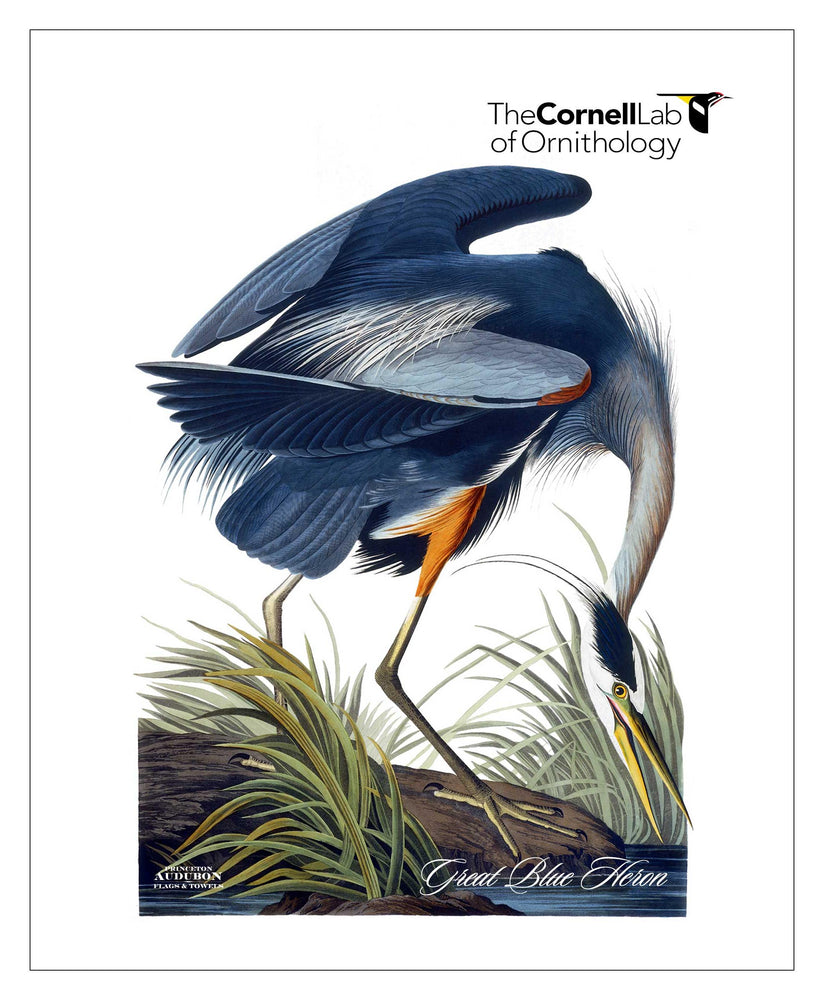 Customer Logo, Pocket/Kitchen/Tea Towel, Great Blue Heron, GREATBLUEHERON, S