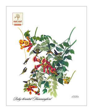 EEM, Pocket/Kitchen/Tea Towel, RH, RUBYTHROATEDHUMMINGBIRD, S
