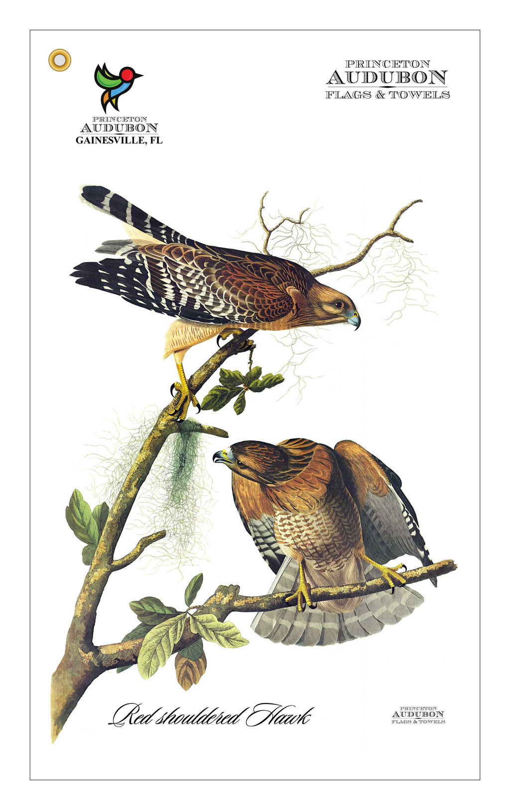 Golf Bag Towel Red Shouldered Hawk