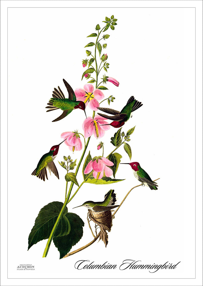 Garden Flag Columbian Hummingbird