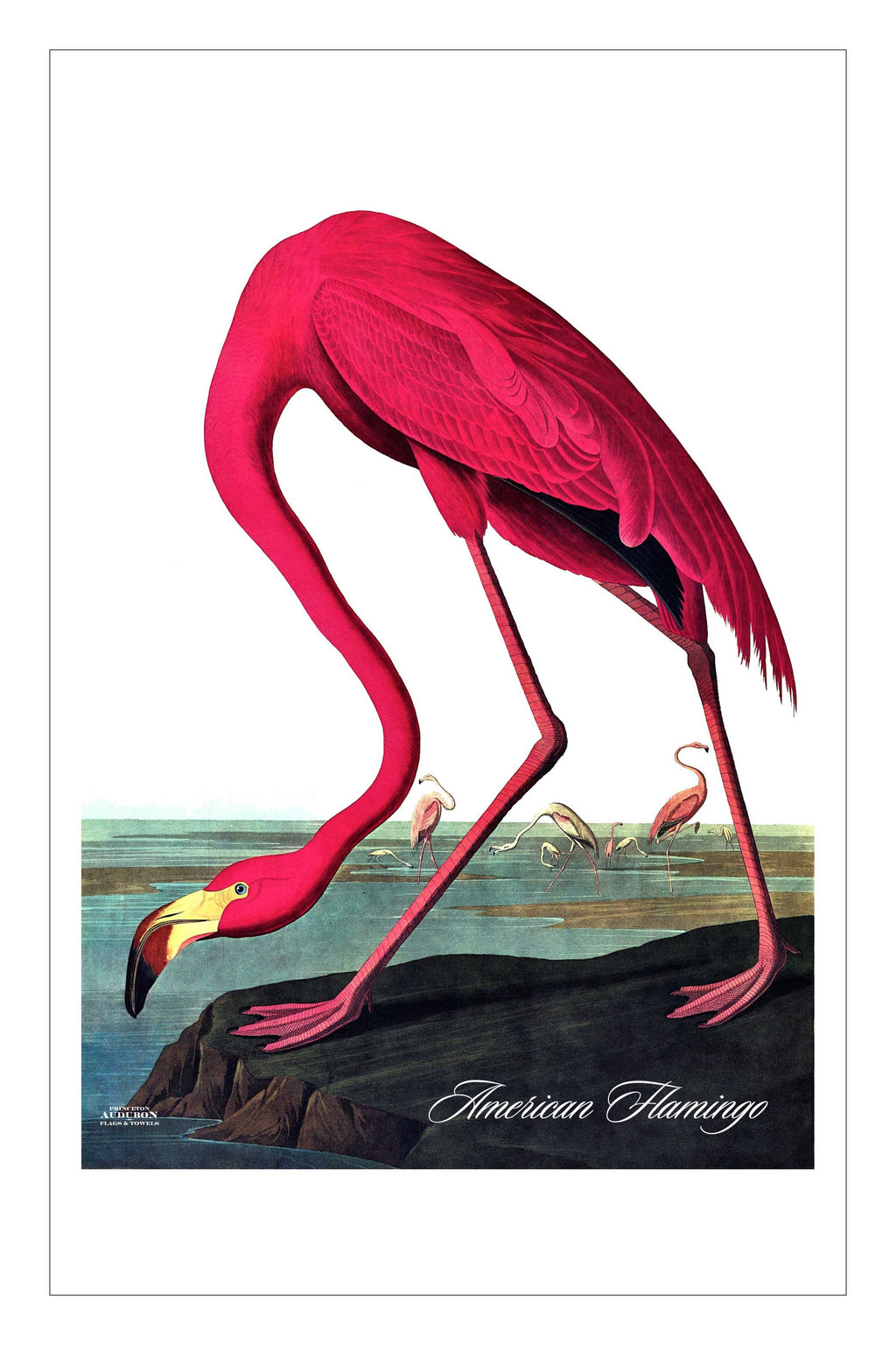 Guest/Kitchen/Tea Towel American Flamingo
