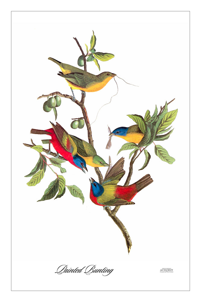 Guest/Kitchen/Tea Towel Ruby Painted Bunting