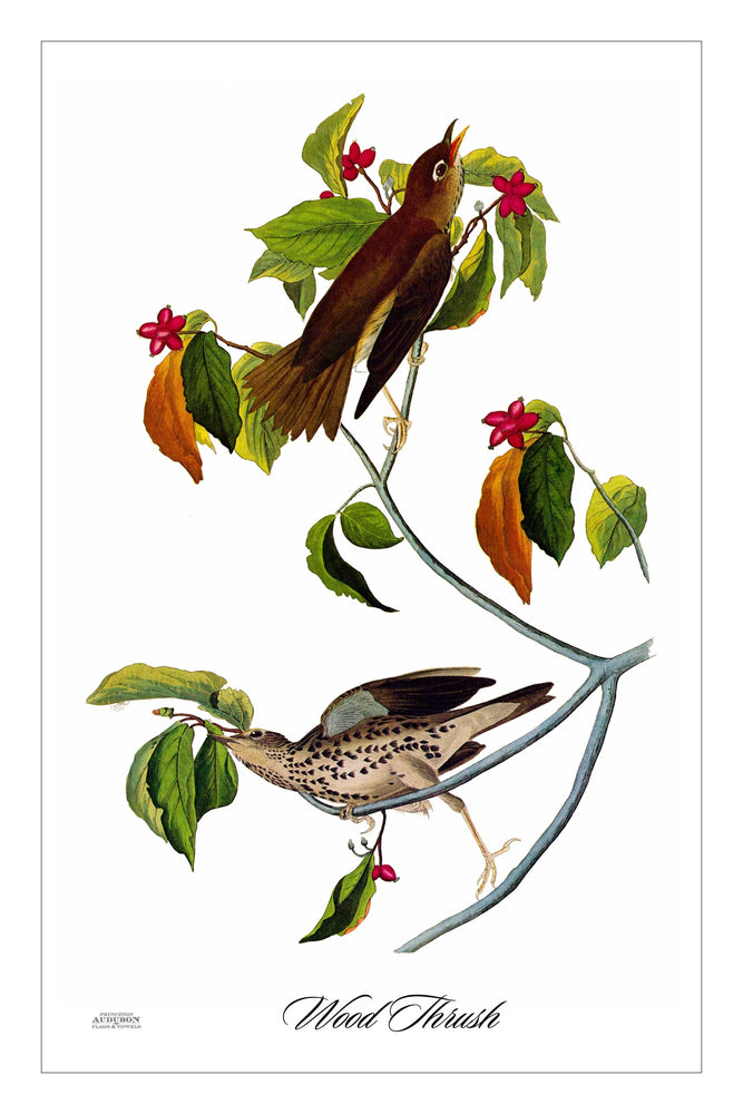 Guest/Kitchen/Tea Towel Wood Thrush