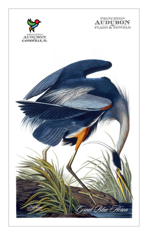 Kitchen Towel no Grommet Great Blue Heron