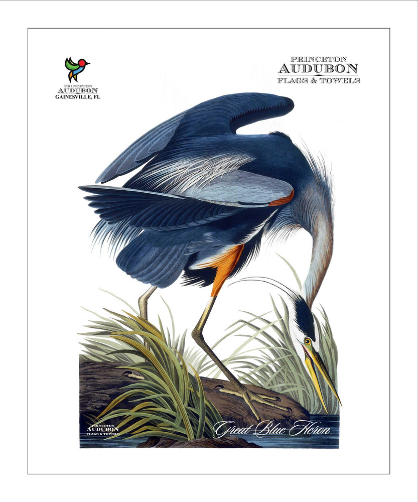 PAL, Pocket/Kitchen/Tea Towel, Great Blue Heron, GREATBLUEHERON, S