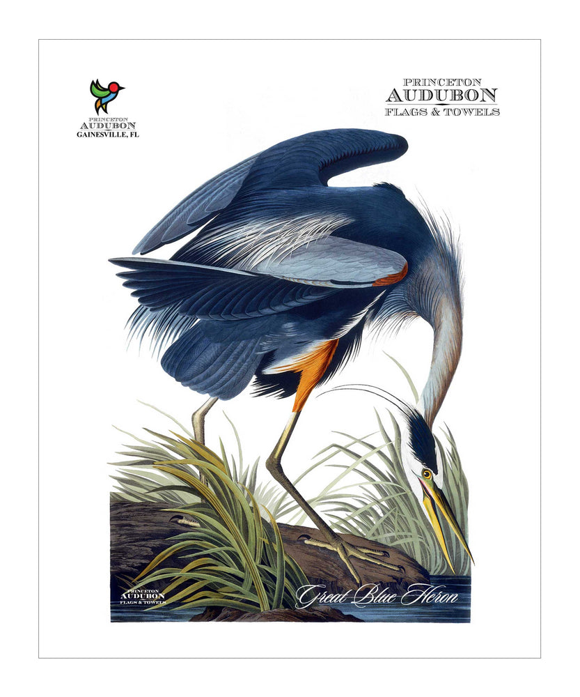 Pocket Kitchen Towel Great Blue Heron
