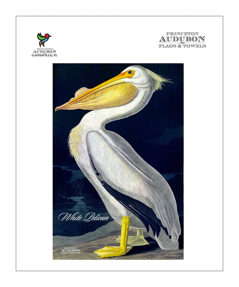 Pocket Kitchen Towel White Pelican