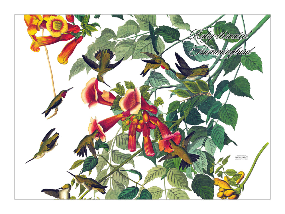 Ruby-throated Hummingbird Placemat, Hardboard