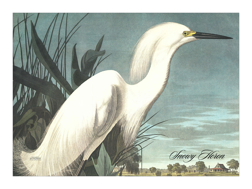 Snowy Heron  Placemat, Woven