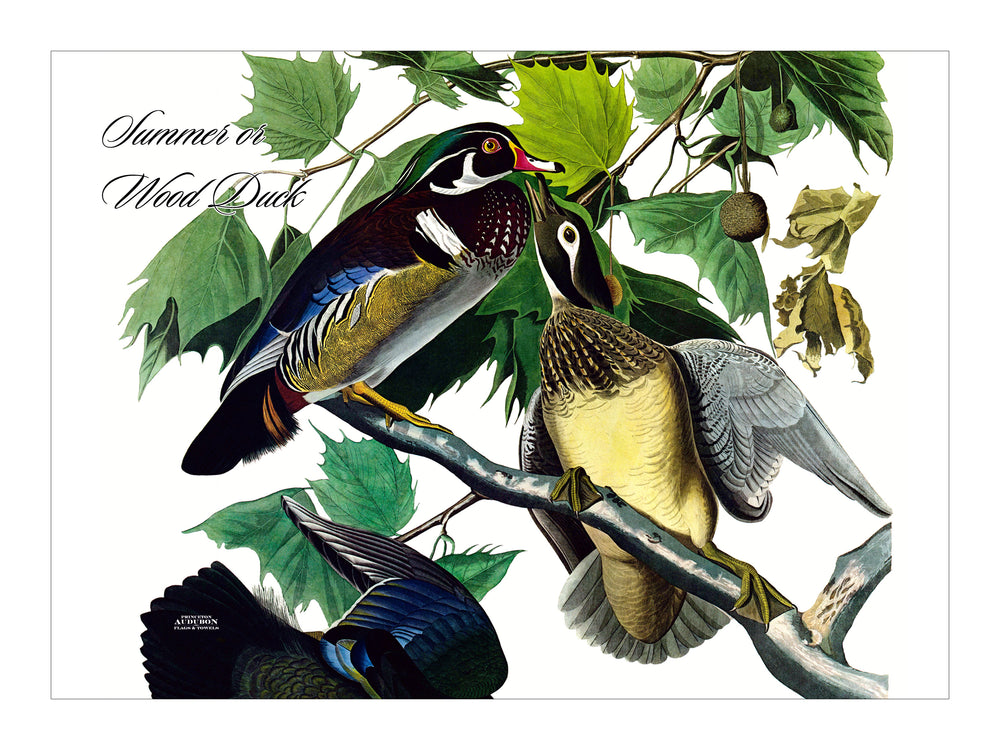 Wood Duck Placemat, Woven