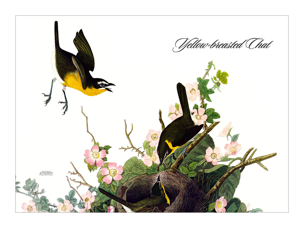 Yellow Breasted Chat Placemat, Woven