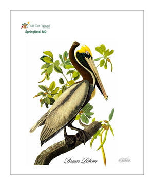 WBU0104, Pocket/Kitchen/Tea Towel, BP, BROWNPELICAN, S