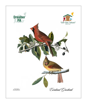WBU0142, Pocket/Kitchen/Tea Towel, CG, CARDINALGROSBEAK, S