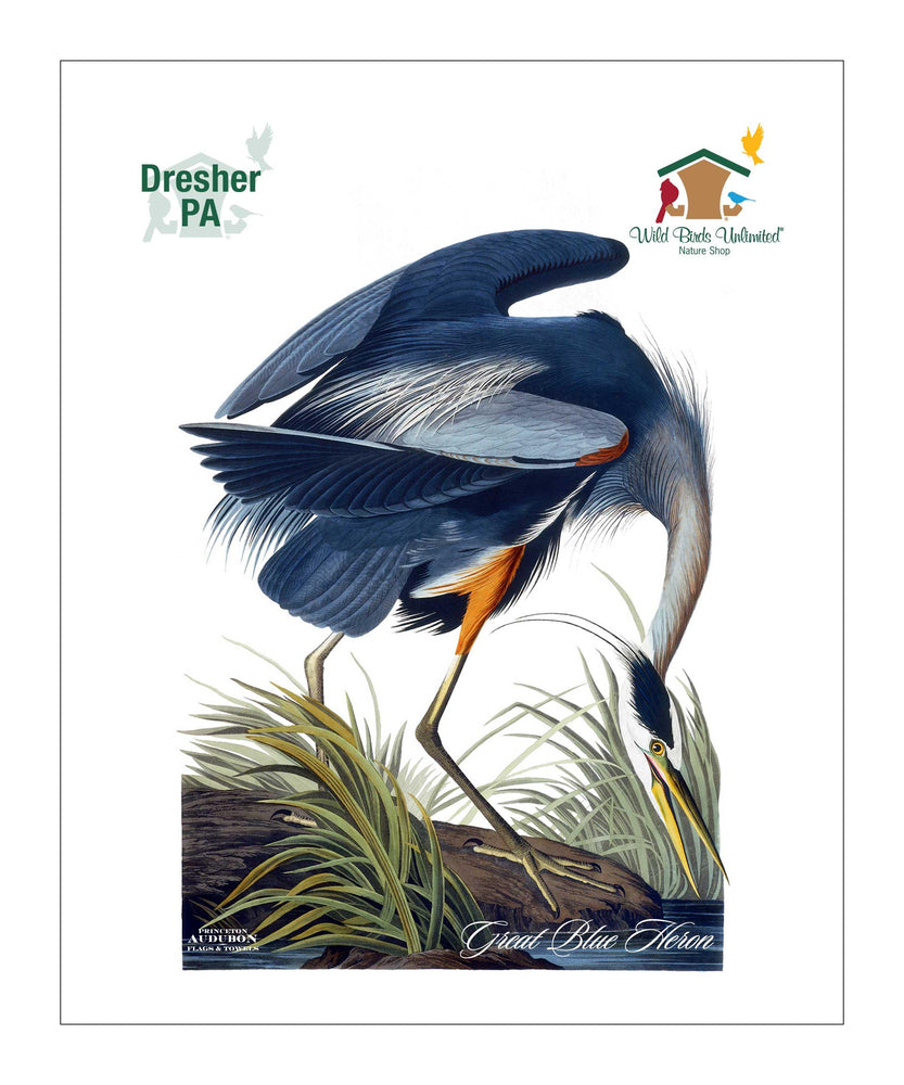 WBU0142, Pocket/Kitchen/Tea Towel, Great Blue Heron, GREATBLUEHERON, S