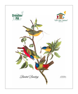 WBU0142, Pocket/Kitchen/Tea Towel, PB, PAINTEDBUNTING, S