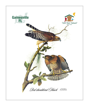WBU0319, Pocket/Kitchen/Tea Towel, RS, REDSHOULDEREDHAWK, S