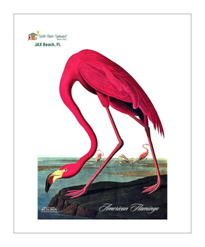 WBU225, Pocket/Kitchen/Tea Towel, American Flamingo, AMERICANFLAMINGO