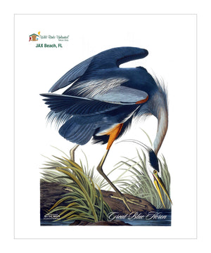 WBU225, Pocket/Kitchen/Tea Towel, Great Blue Heron, GREATBLUEHERON