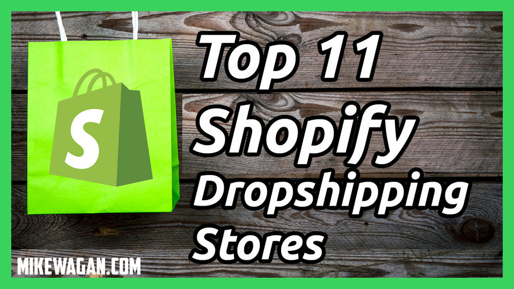 Top 11 Shopify Dropshipping Stores Based On Traffic (With