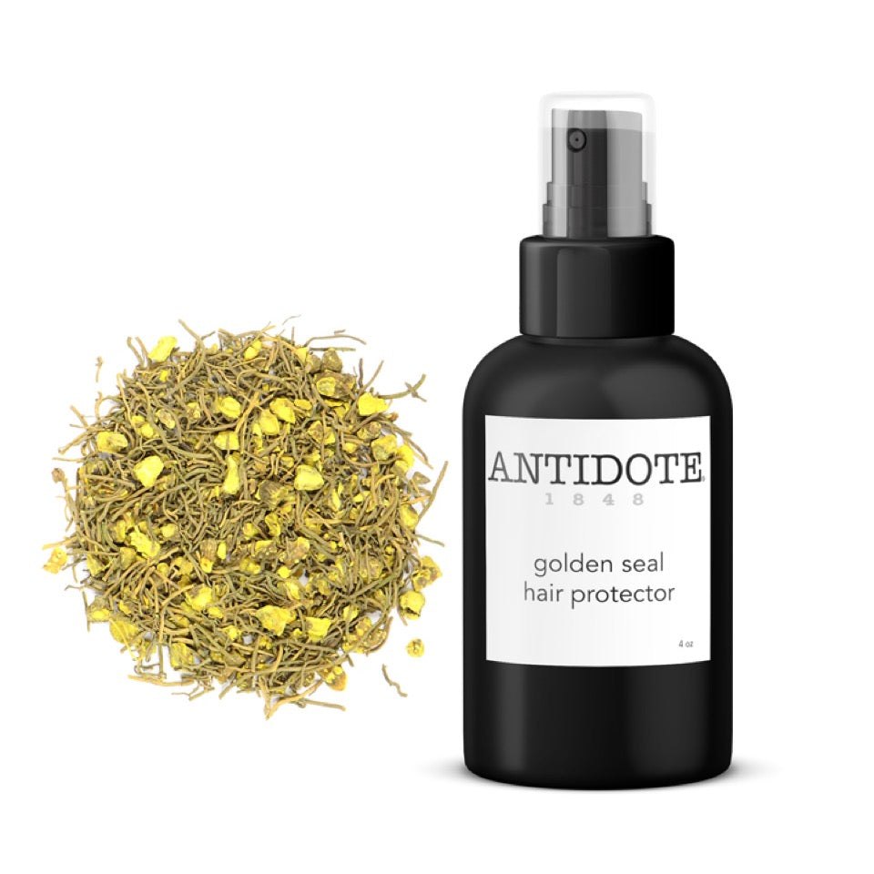 Protect hair color and shine - ANTIDOTE Goldenseal Hair Protector