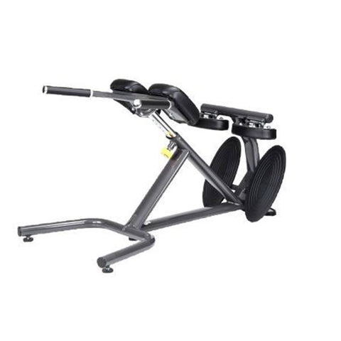 SportsArt A993 45 Degree Back Hyperextension - SportsArt Free Weight Series