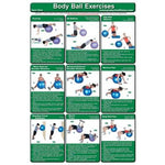 Body Ball Poster Pack - Handbooks Posters & DVDs