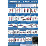 Dumbbell Exercises Chart - Shoulders and Arms - Handbooks Posters & DVDs