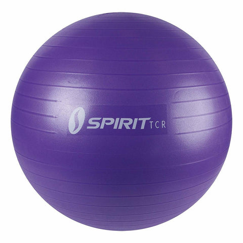 SPIRIT TCR Exercise Ball