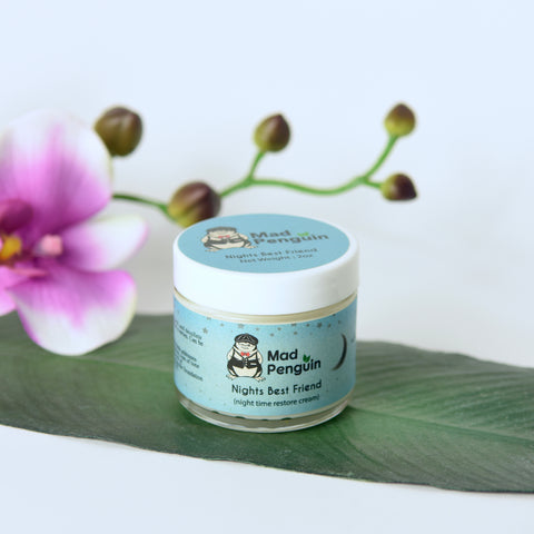 Night Best Friend - Night time restore cream