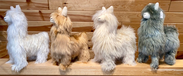 "17"" Medium/Large Suri Alpaca Standing"