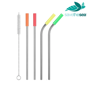 4 Piece Curved and Straight Stainless Steel Straws with Silicone Tips