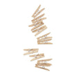 Clothes Pins (Natural) JJGA022D