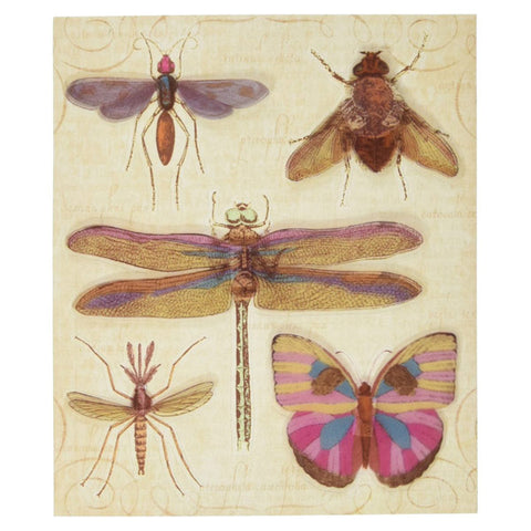 Insects Dimensional Stickers KCO-30-596450
