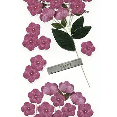 Phlox Millinery Flower MS-41-00483