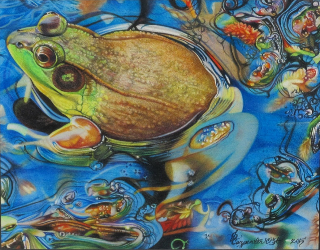"""Toadally Awesome"" by Jennifer Carpenter - Colored Pencil"