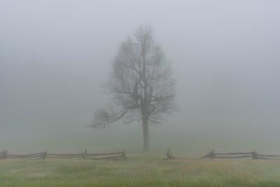 """Fog Along the Parkway"" by Dan Robertson - Photography"