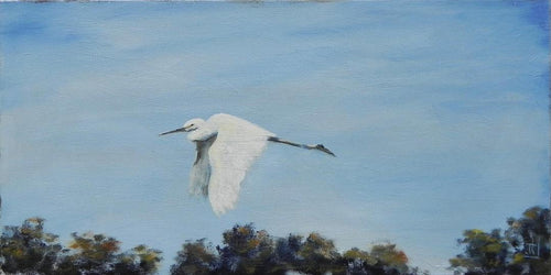 """Hang Gliding"" by Jenny Traynham - Original Oil"