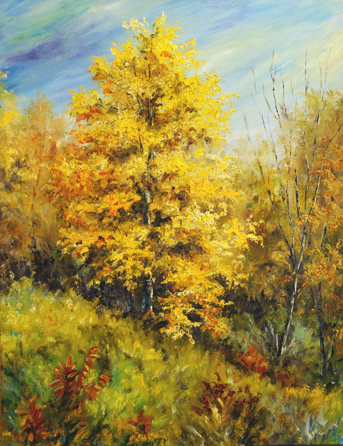 """Poplar Colors"" by J K (Karen) Phillips Sewell, Reproduction"