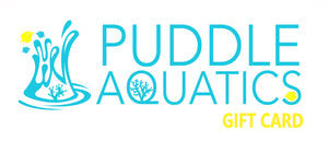 Puddle Aquatics Gift Card