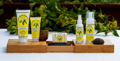 Lemon Myrtle Fragrances, Where to buy Lemon Myrtle Products, Lemon Myrtle Insect Repellent, Lemon Myrtle Skincare