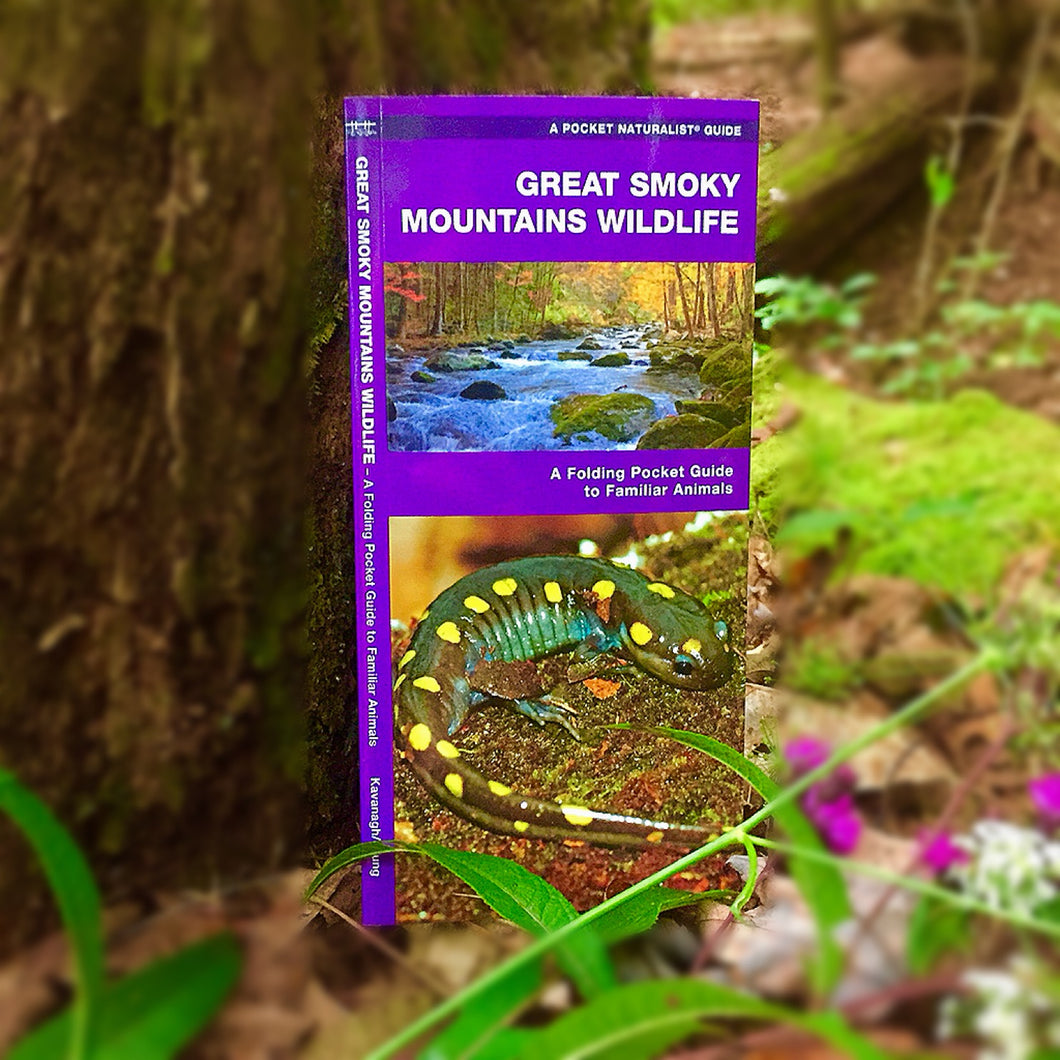 Great Smoky Mountains - Wildlife Guide