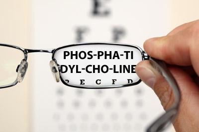 Phosphatidylcholine and Vision: Will The Real PC Please Stand Up?