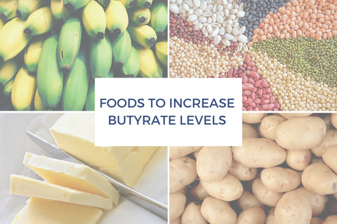 foods high in butyrate: dairy, cold rolled oats, legumes, cooled potatoes, cooled rice, underripe bananas and plantain flour