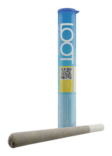 Blue Cheer CBD Pre-Roll Hemp Joint