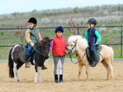Horseback Riding Lesson Package
